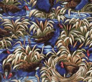 A064 Pukeko Swamp preview