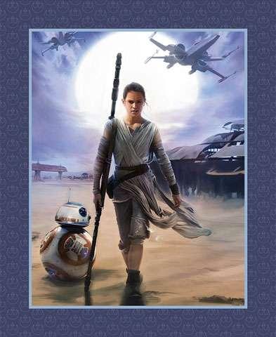 AC157 Star Wars - The Force Awakens - Rey (Panel)