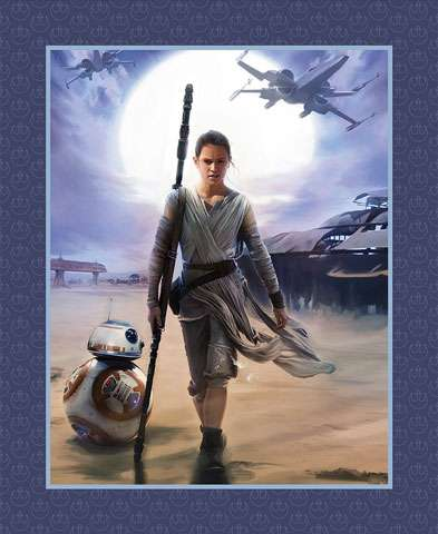 AC157 Star Wars - The Force Awakens - Rey (Panel)