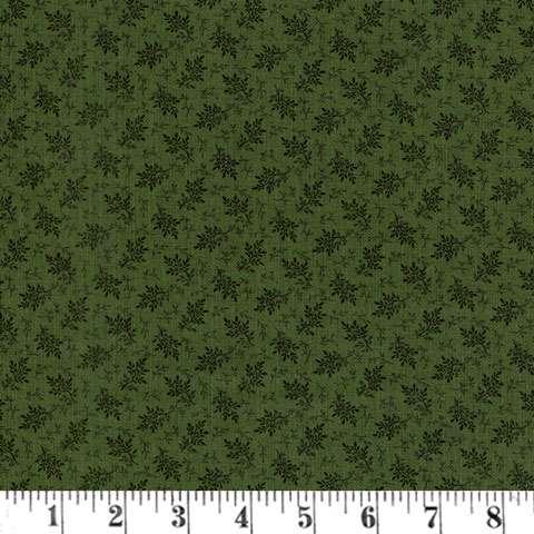 AC208 Green - Basics