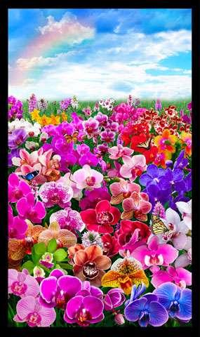 AC955 Digital Orchids - Panel