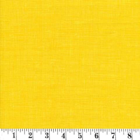 AD197 Tone on Tone - Daffodil Sketch