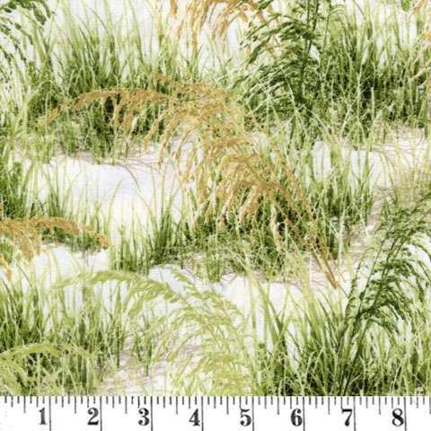AD944 BeachHaven - Grass