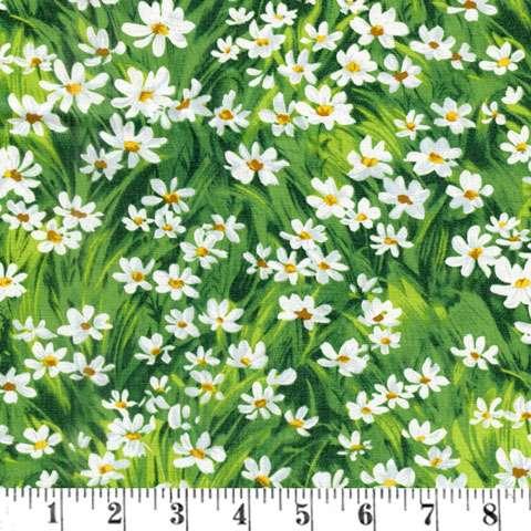AD975 Meadow Daisy