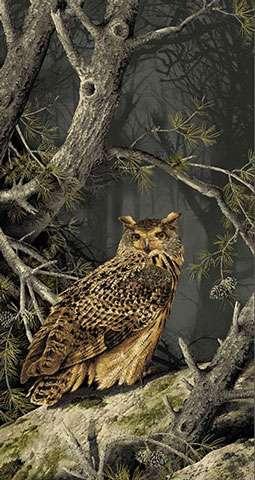AD976 Majestic Woods - Owl Panel