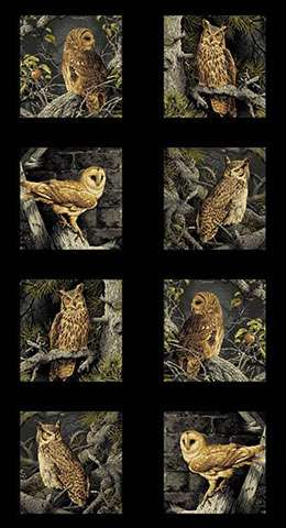 AD977 Majestic Woods - Owl Blocks - Panel Repeat