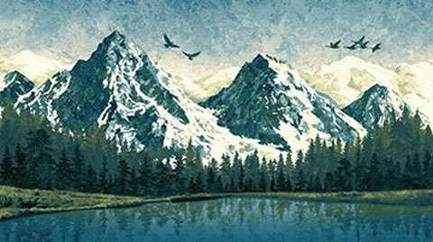 AE227 Mountain Wilderness - Panel