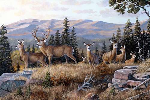 AE623 High Ridge Crossing - Digital Deer Panel