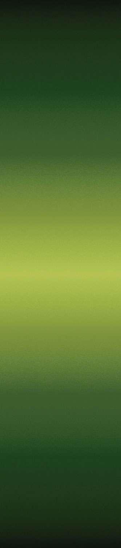 AE885 Gradations Ombre - Moss