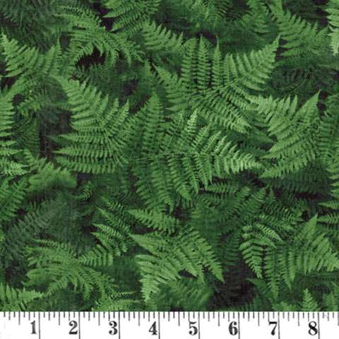 AF446 Chasing Waterfalls - Ferns preview