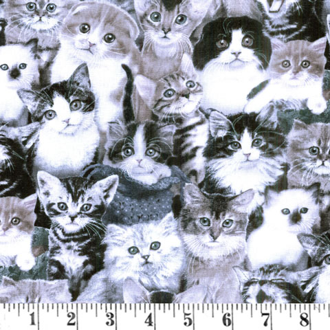AJ019 Cat Breeds - Packed Cats preview