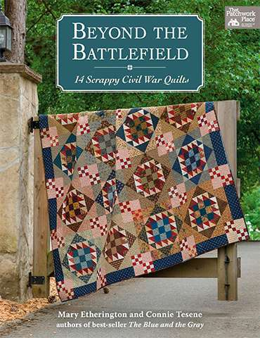 Beyond the Battlefield by Mary Etherington & Connie Tesene (Book) preview