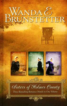 Sisters of Holmes County by Wanda E Brunstetter (Book)