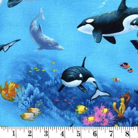X047 Blue Whales