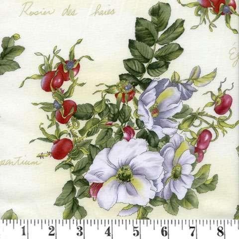 X391 Wild Rose - white roses & hip berries on cream