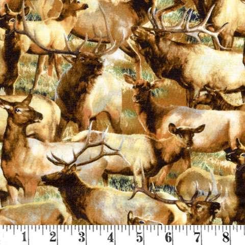 Y043 Breaking Light - Packed Elk