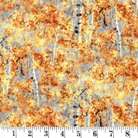Y064 Tree texture