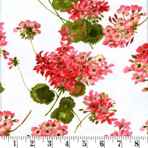 Y483 Sundance - geraniums on white