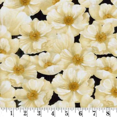 Y564 Midnight Poppies
