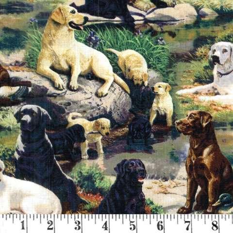 Y638 Wild Things - Labradors