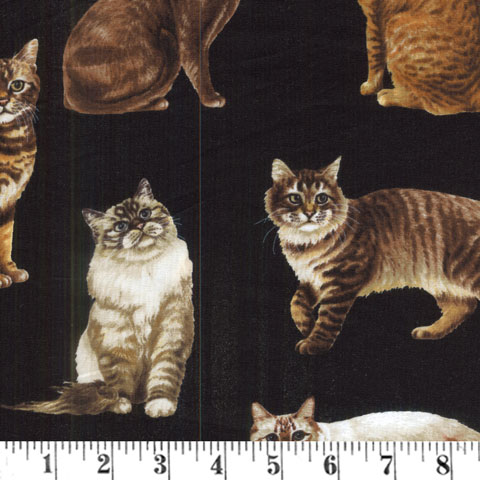 Z786 Cats - Black