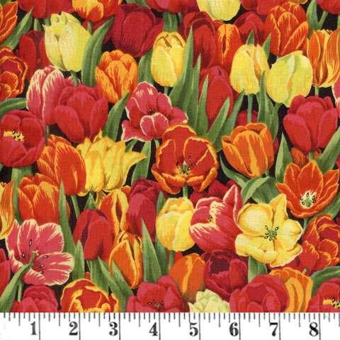 Z944 Tulips - Cluster