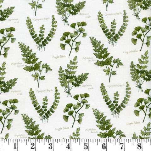 Z947 The Botanist - Foliage